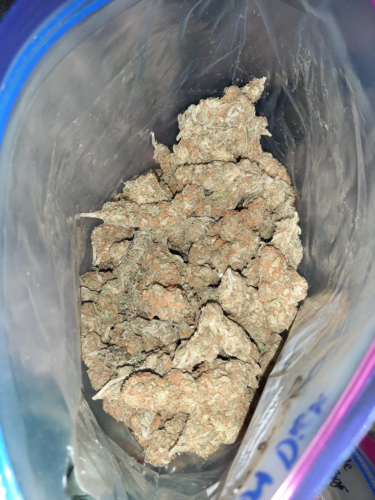 Venta de Marihuana y Hash Extraccion TOP 5* y mas en Vigo compra entrega domicilio en mano en