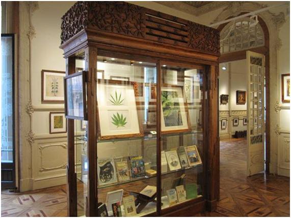 Museo del cannabis de Barcelona – Venta de Marihuana y ...